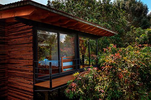 Мексика: деревянные виллы, окруженные диким садом
